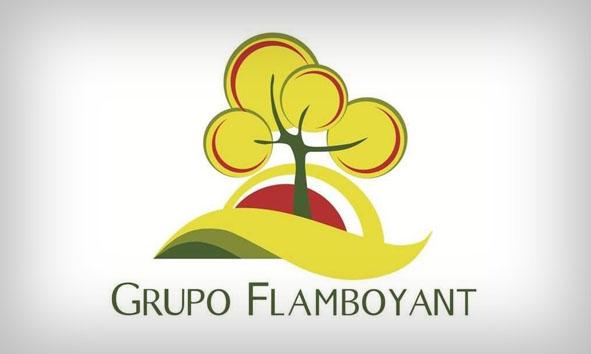 Grupo Flamboyant